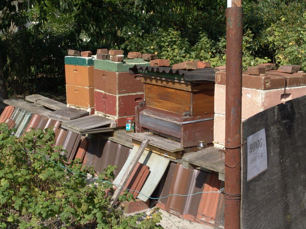 Honigbeuten